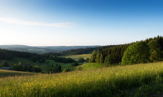 Ferienland Schwarzwald im Sommer
