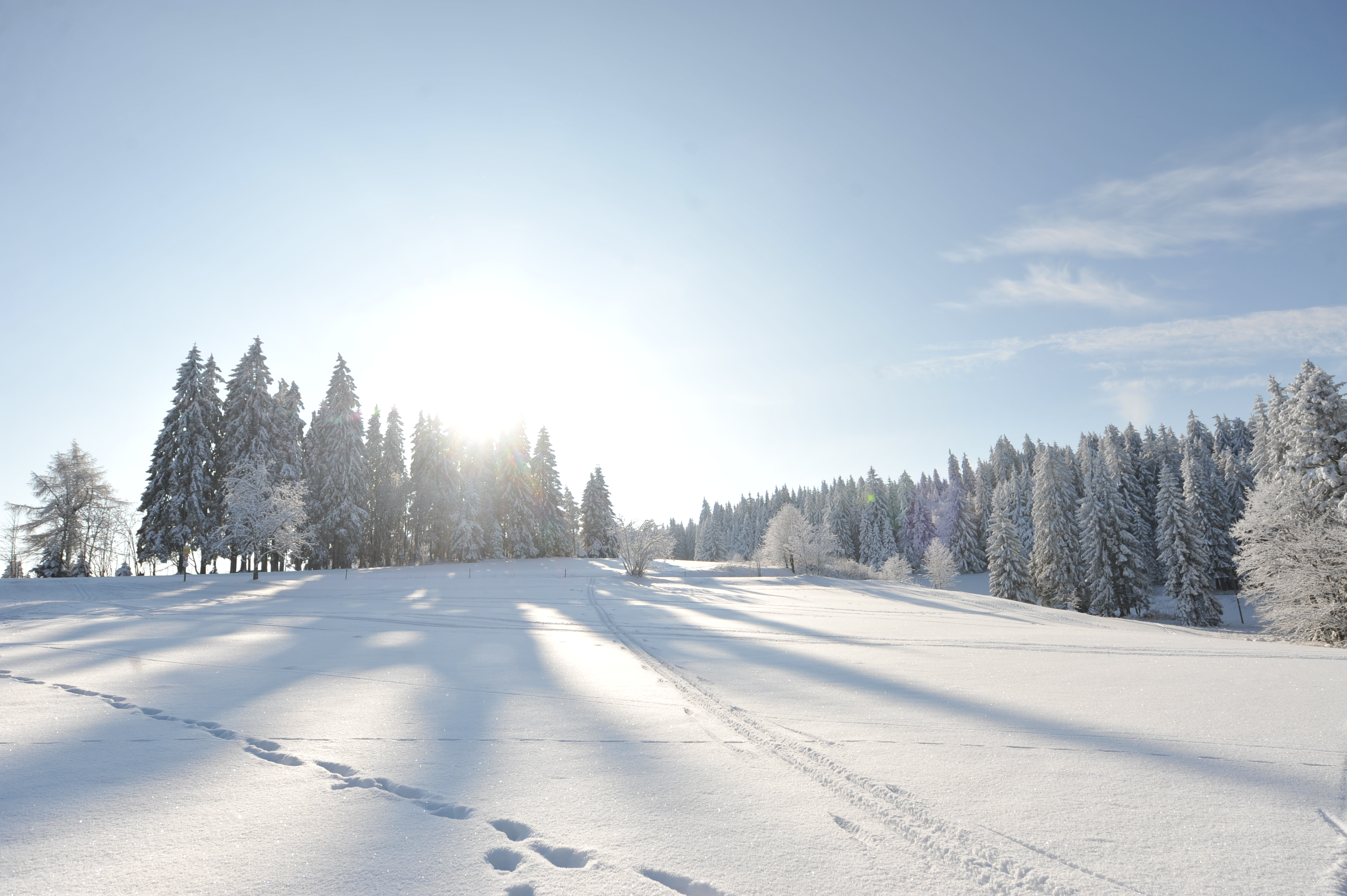 Winterlandschaft im Ferienland Schwarzwald