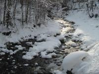 Die Eifel im Winter