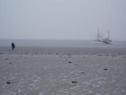 Weltnaturerbe Wattenmeer in Ostfriesland