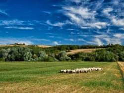 Sanfte Hügellandschaft in der Toskana