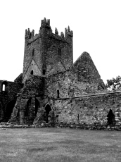 Jerpoint Abbey in Thomastown (Irland)