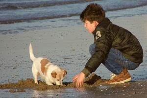 Hundeliebling Kühlungsborn