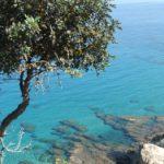 Badegewässer in Europa sind sauber