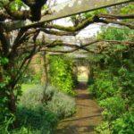 Wanderwochen auf Guernsey und Jersey
