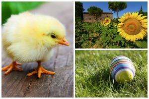 Ostern auf Biobauernhof